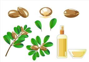 Argan Free Vector