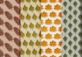 Padrões das folhas de outono do vetor