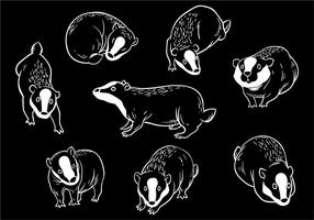 Gratis Honey Badger Icons Vector