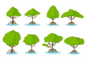 Vector libre de manglar