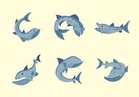 Barracuda fish vector illustration