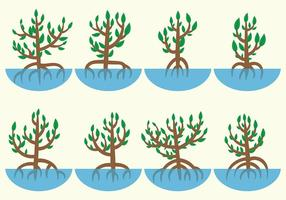 Vetor de manguezais