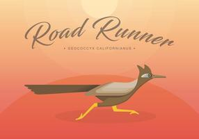 Roadrunner fågel illustration