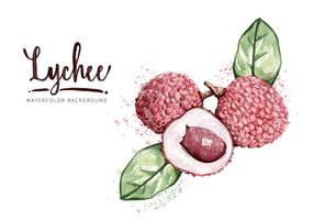 Free Lychee Background