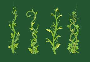 Liana green leaf vector pack