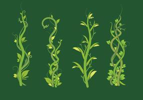 Liana gröna blad vektor pack