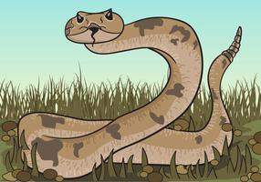 Brown Rattlesnake Looking For Prey Illustration