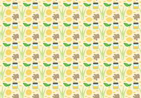 Vector Lemongrass gratis