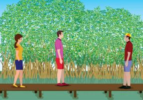 Illustration Mangrove Gratuite
