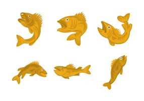 Walleye vector illustration