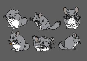 Chinchilla Vector Pack 1