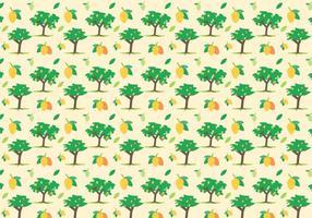 Freier Mango Vektor