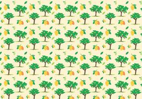 Vector Mango Gratis