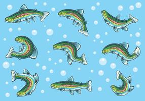 Rainbow Trout Icons Vector