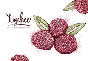 Fond de Lychee gratuit