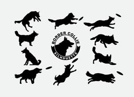Vecteur border collie silhouette