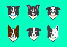 Free Border Collie Vector