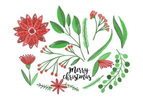 Free Christmas Flowers vector