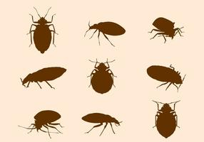Free-bed-bug-vector