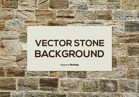 Fondo de piedra del vector