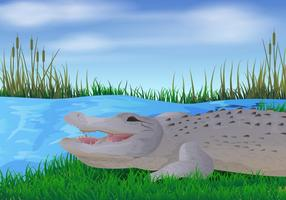 Illustration de Gator In The River