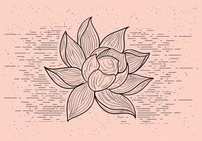 Fleur de vecteur détaillée gratuite