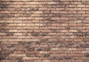 Texture de mur de brique vectorielle