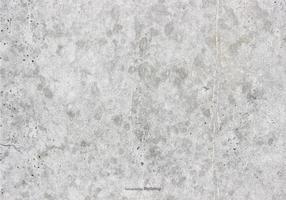 Textura Concreta Del Vector