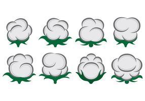Vector Van Katoen Bloemen