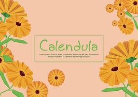 Gratis Calendula Illustration