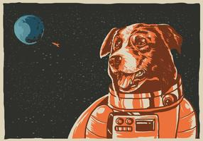 Border collie espacial