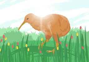 Kiwi bird illustration
