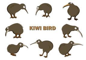 Vector Kiwi libre de aves