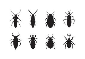 Gratis Bed Bug Vector