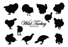 Wild Turkey Silhouettes vector