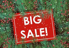 Big Sale With Sapin