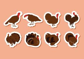 Free Turkey Bird Vector Illustration