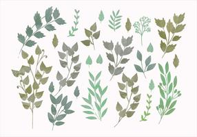 Vector Watercolor Spring Branches