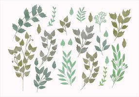 Vector Watercolor Spring Branches