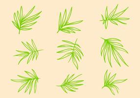 Vector de bambu grátis