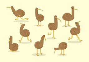 Gratis Kiwi Vogel Vector
