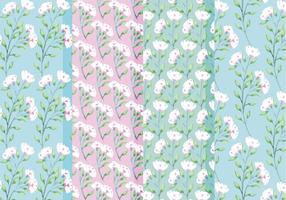 Vector Primavera Rosas Patrones