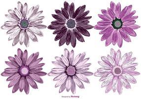 Colección de flores de vector