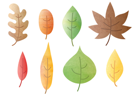Free Watercolor Autumn Leaves Vector