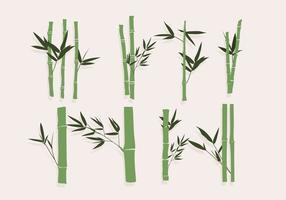 Bambú verde del vector
