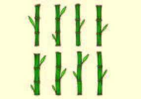 Conjunto de vectores de bambú