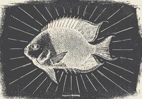 Vintage poisson Illustration