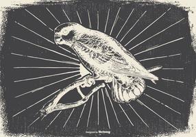 Ilustração do pássaro do vintage
