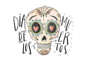 Diâmetro De Los Muertos Ilustração