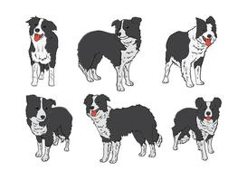 Free Border Collie Icons Vektor